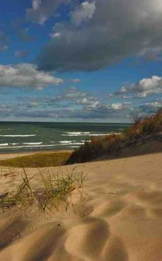 Indiana Dunes State Park Campgrounds | Travel | Vacation Ideas | Road Trip | Places to Visit | Chesterton  | IN | Hiking Area | Natural Feature | Nature Reserve | Children's Attraction | RV Park | Cottage / Cabin Rental | Campground