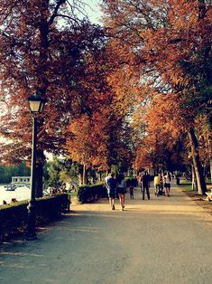 Autumn in Retiro Park, Madrid Places To See, Spain, Sidewalk, Wanderlust, Autumn, Memories, Explore, Travel, Viajes