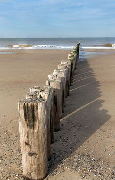 Wooden posts at the beach Seaside Beach, Ocean Beach, I Love The Beach, Beach Landscape, Baltic Sea, Beach Trip, Holland, Coastal, Beautiful Places