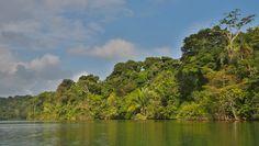 Rio Chagres desde el Cayuco