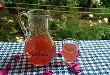 Trandafirata, lichior fin de trandafiri, reteta veche, simpla Cold Drinks, Alcoholic Drinks, Tea Cafe, Yummy Food, Tableware, Tips, Cat, Pickles, Dessert Recipes