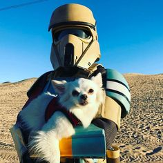 An Imperial ShoreTrooper and his dog.