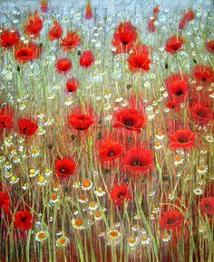 Poppies and Mayflower by Jo Starkey