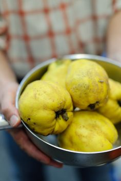 Quince for delicious Tracklements Quince Fruit Cheese #Tracklements #Quince #Cheese
