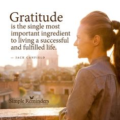 Key to a successful life Gratitude is the single most important ingredient to living a successful and fulfilled life. — Jack Canfield