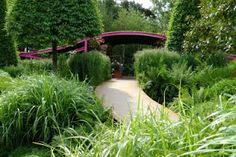 Exhibition garden designed by Gavin Diarmuid - Chelsea Flower Show 2011. Green on green with a dash of purple
