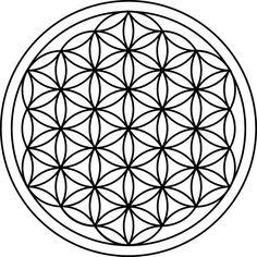 Élet Virága, Szent Geometria, Virág