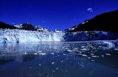 The Arctic melt #healthytreefrog