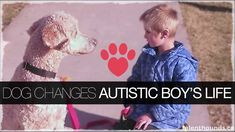 How did a dog make this little boy's life better?