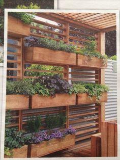 2 x strakke Douglas houten pergola, dwars op bijkeuken, tussen de staanders kruidenbakken onder het raam.