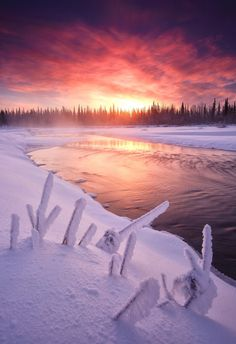 Alaska   Photographer: Wolfhorn
