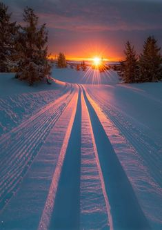 Those lines. That sunrise! Honestly, winter can be amazing. :) Winter Sunrise - title Skiing into morning light. - by Jornada Allan Pedersen Beautiful Sunset, Beautiful World, Beautiful Places, Wonderful Places, Beautiful Winter Scenes, Winter Scenery, Winter Sunset, Winter Snow, Winter Time