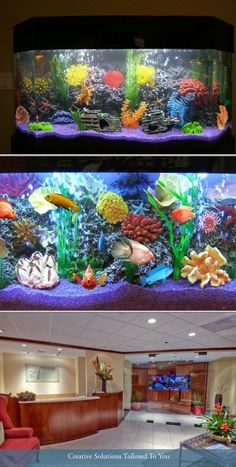 Crystal Clear Aquarium Service has been in the fish tank service for 28 years. They provide aquarium cleaning and installation, saltwater and freshwater fish tank maintenance and more. Get a free quote at Thumbtack.com.