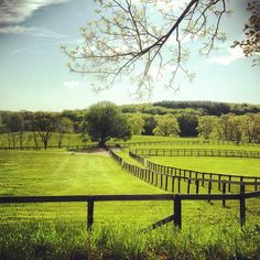 Sunnyfield Farm, Bedford