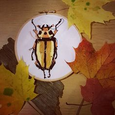 You will soon be able to buy original artworks from my etsy shop! Watch has this space! Working on photos for my new embroidery hoop collection! http://ift.tt/2fcrFO5 #bristolartist #textileartist #embroidery #embroideryhoops #bug #beetle #christmas #autumn