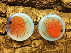 """1"""" Real Butterfly Wing Plugs Double Flare Opal by AsanaNaturalArts, $32.50"""