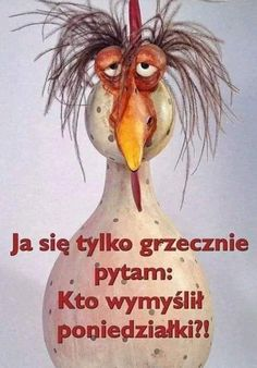 No właśnie, kto? Ceiling Painting, Weekend Humor, Education Humor, Wtf Funny, Man Humor, Motto, Good Morning, Funny Animals, Funny Quotes