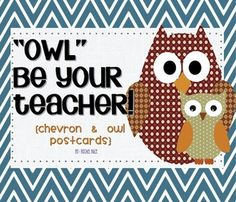 Cute owl and chevron teacher introduction postcards! Students would love to get one from their new teacher over the summer! $