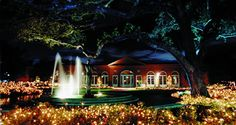 Our Reception Site-Pavilion of Two Sisters, City Park, New Orleans