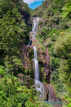 Kitekite Falls within Waitakere Ranges Regional Park on New Zealand's North Island