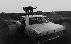 dusk in coober pedy, south australia, 1978 • wim wenders