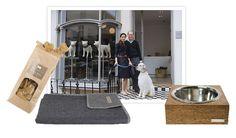 Mungo & Maud shopping accessoires pour chien