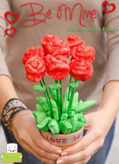 Valentines Day Red Roses by The Marshmallow Studio