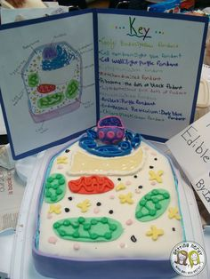 Teach cells & cellular processes in your life science or biology classroom! Teach cells & cellular processes in your life science or biology classroom! Science Cells, Science Fair, Life Science, Science Experiments, Science Jokes, Weird Science, Physical Science, Earth Science, 6th Grade Science