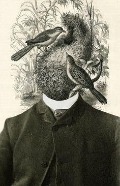 Mercy Art Print by Matthieu Bourel / Ek dojo - X-Small Collages, Collage Art, Matthieu Bourel, Research Images, Photomontage, Bird Art, Amazing Art, Art Drawings, Illustration Art