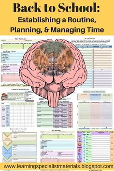 Having a great school year is largely determined by a student's ability to plan out their day, manage their time and stick to a routine.  In other words, they need to have well developed executive functioning skills... #backtoschool #executivefunctioning #gettingorganizedforschool Learning Styles, Fun Learning, Classroom Organization, Classroom Management, Auditory Processing Disorder, Sensory Processing, Working Memory, Executive Functioning, Learning Disabilities