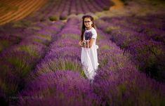 session in lavender provance