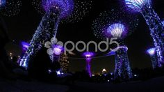 Gardens by the Bay Singapore - Stock Footage | by JahnProductions