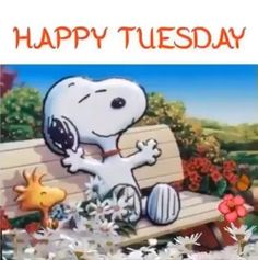 good morning quotes for him ~ good morning quotes Good Morning Snoopy, Tuesday Quotes Good Morning, Happy Tuesday Quotes, Tuesday Humor, Morning Humor, Happy Quotes, Taco Tuesday, Funny Good Morning Quotes, Morning Gif
