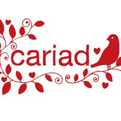 Cariad is welsh for love