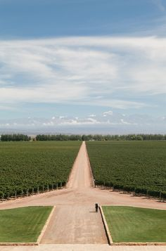 catena zapata winery in argentina