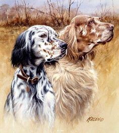 ENGLISH SETTER Two color Dogs Hunting (by Killen Art) on One fabric panel to sew. Cross Paintings, Animal Paintings, Animal Drawings, Hunting Art, Hunting Dogs, Art Carte, Dog Artwork, Loyal Dogs, Irish Setter