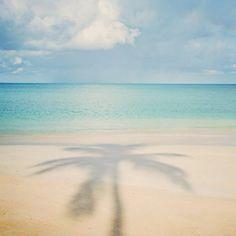 {beach}