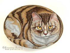 Calico cat by sassidipinti, via Flickr