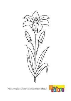 Kwiaty - kolorowanki dla dzieci