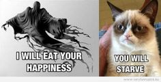 Grumpy Cat Pictures With Sayings        All of image that appear on this page found from internet. The WebMaster does not hold any Legal Rights of Ownership on them. Ownership/Copyrights still vests with whomsoever concern. If by anyhow any of them is offensive to you, please Contact Us asking for the removal. If any images...