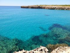 Cala Morlanda zwischen S'Illot und Porto Cristo. Juni 2016