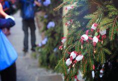 """Festival Santa Croce : la fête des fleurs!"" by @lafillevoyage"