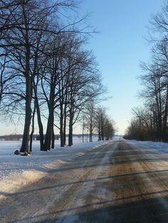 Georgina, Ontario Ontario, Toronto, Country Roads, Canada, Seasons, Seasons Of The Year