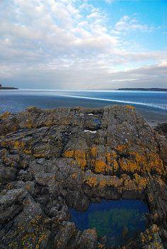Outre le fait que la Baie de Saint Brieuc soit la 5e plus importante au monde en terme d'amplitude des marées, c'est aussi la plus grosse réserve naturelle bretonne. Au détour du GR34 dans l'anse d'Yffiniac ou de Morieux, ce sont quelques 40 000 sortes d'oiseaux qu'on peut y observer. Riche en paysages variés, c'est un lieu incontournable pour les randonneurs et photographes passionnés !