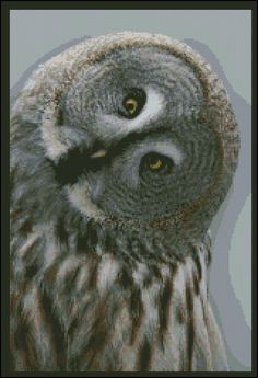 An-owls-character-counted-needle-point