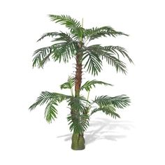 Only US$70.37, Artificial Plant Cycus Palm Tree 150 cm - LovDock.com (6.250 RUB) ❤ liked on Polyvore featuring home, home decor and floral decor