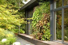 Urbanes Grün: Vertikale Gärten | NZZ Bellevue