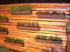 Vertical herb garden on fence