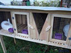 Красивые клетки для кроликов
