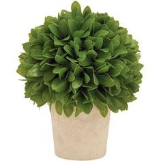 Add a lush touch to your home d�cor with this chic faux topiary.Product: TopiaryConstruction Material: VinylColor: Green and creamFeatures: Pot is includedDimensions: 10 H x 8 Diameter    Note: Not recommended for outdoor use